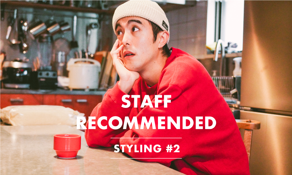 STAFF RECOMMENDED STYLING #2